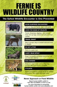 Wildlife-Trailhead-poster